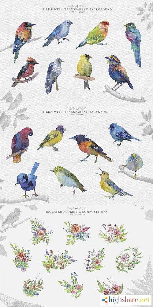watercolor clipart bird set 5f47354a2c7d3 - Watercolor Clipart Bird Set