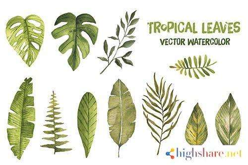 watercolor vector tropical leaves palm leaf exotic jungle 5f41e59bc6fb4 - Watercolor vector tropical leaves palm leaf exotic jungle