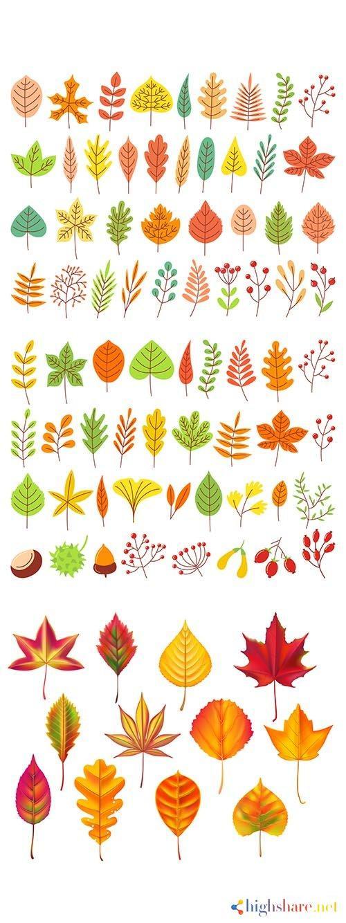 yellow autumnal garden leaf 5f409dd8e1426 - Yellow autumnal garden leaf